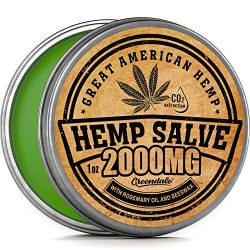 61xpLfu6yyL1 250x250 - Hemp Oil Salve for Pain Relief - 2000 Mg - Fast Acting & Natural - Knee, Muscle, Joint, Neck & Back Pain Relief - Premium Hemp Oil Made in USA - Anti Inflаmmаtory Hemp Balm - MAX Efficacy - No GMO