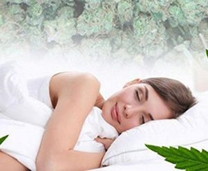 cannasleep 300x247 - 5 Benefits of Getting a CBD Massage