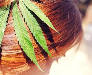 hemp shop healthy hair 700x467@2x 300x247 - Marijuana: Since 8000-5000 BC